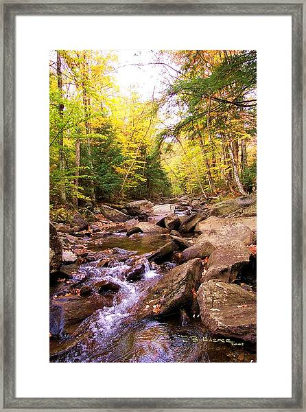 Stone Brook I Framed Print