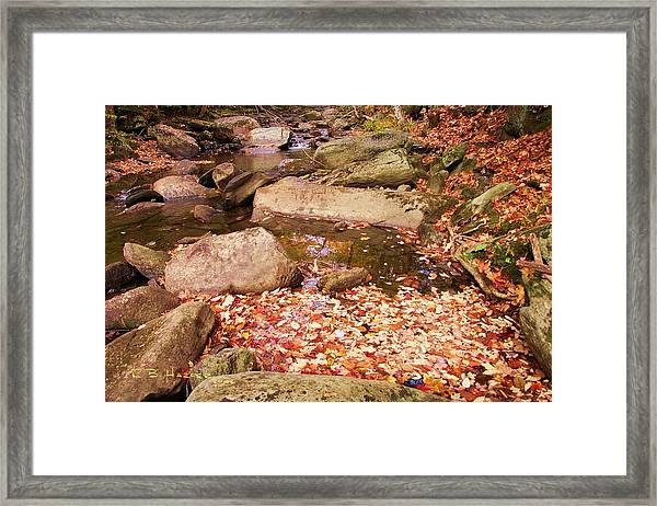Stone Brook II Framed Print