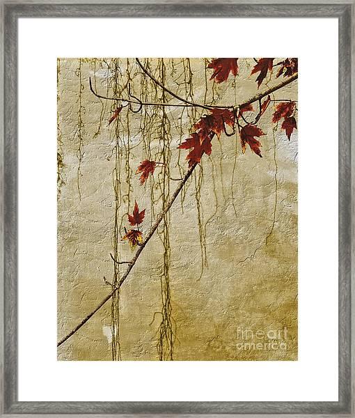 Stone Walled Framed Print