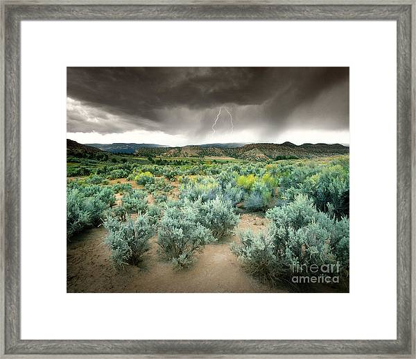 Storms Never Last Framed Print