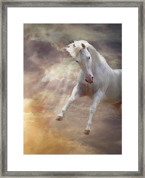 Framed Print featuring the photograph Stormy by Melinda Hughes-Berland