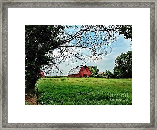 Stovall Farms In The Mississippi Delta Framed Print