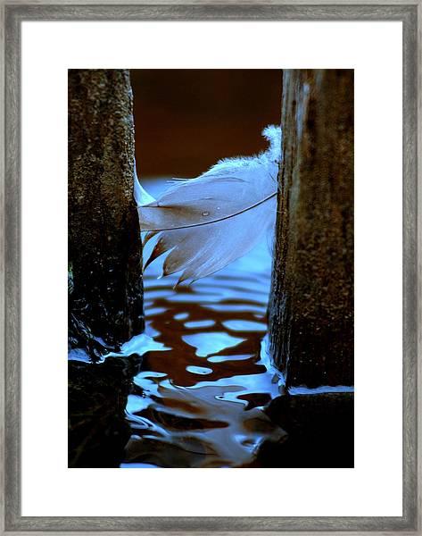 Straddling Framed Print