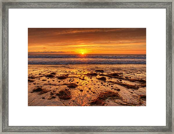 Stranded  Framed Print by Donna Pagakis