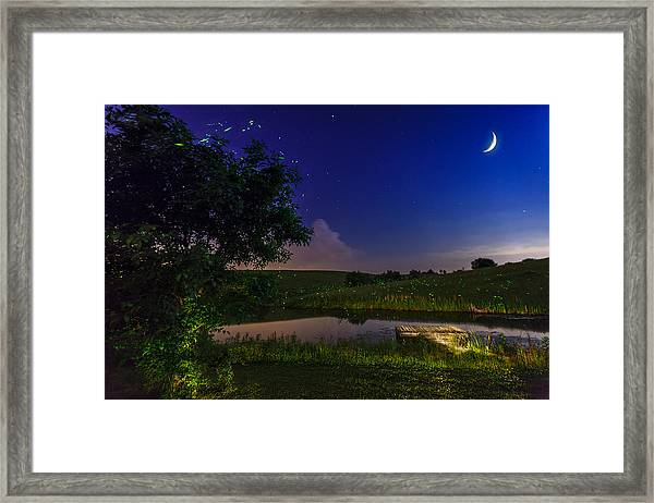 Strangers In The Night Framed Print