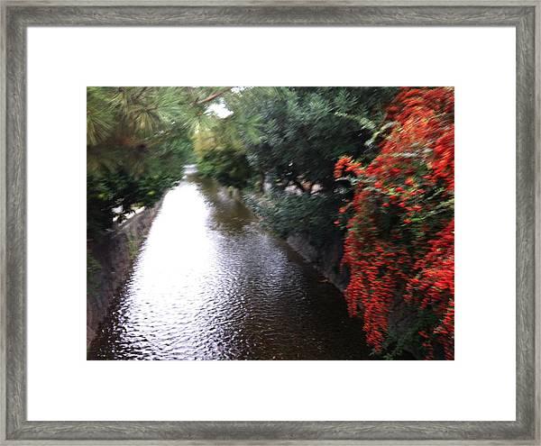 Stream In Kyoto  Framed Print