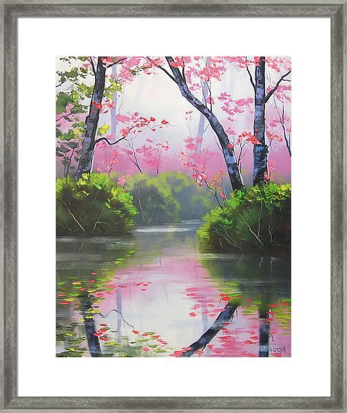 Stream Reflections Framed Print