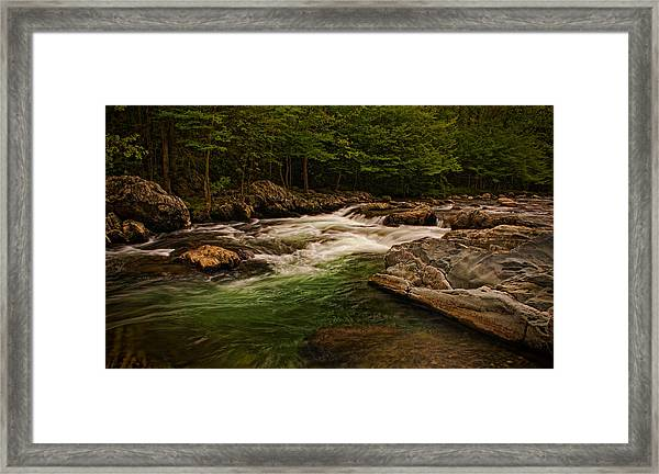 Stream Within The Trees Framed Print