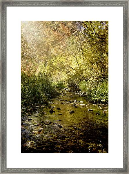 Streams Of Light II Framed Print