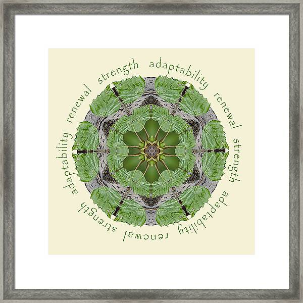 Framed Print featuring the photograph Strength Mandala 1 by Beth Sawickie
