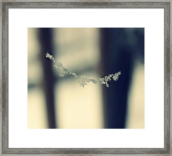 String Of Snowflakes Framed Print