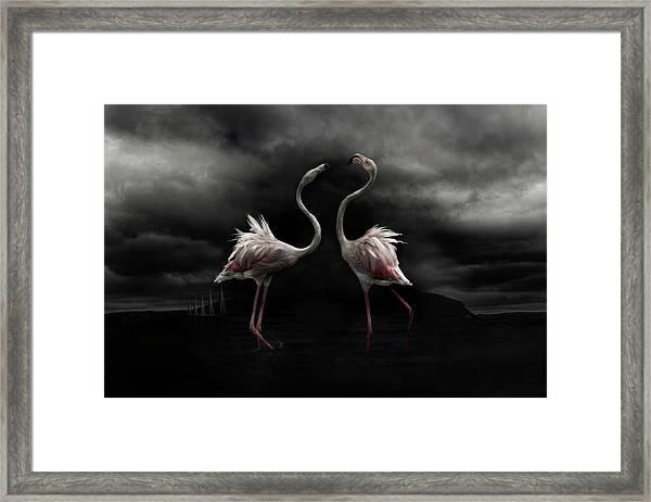 Strong Temperament Framed Print by Martine Benezech