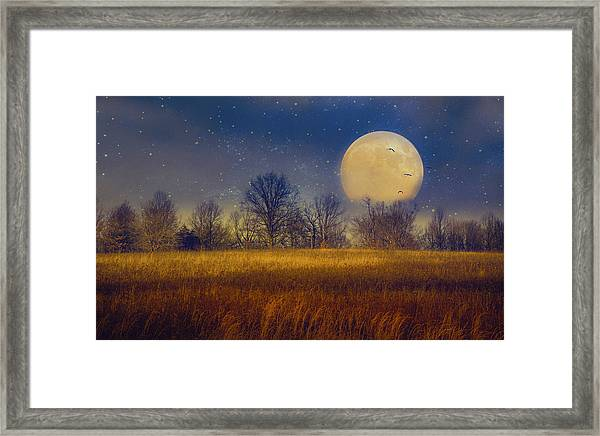 Struck By The Moon Framed Print