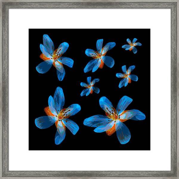 Study Of Seven Flowers #2 Framed Print
