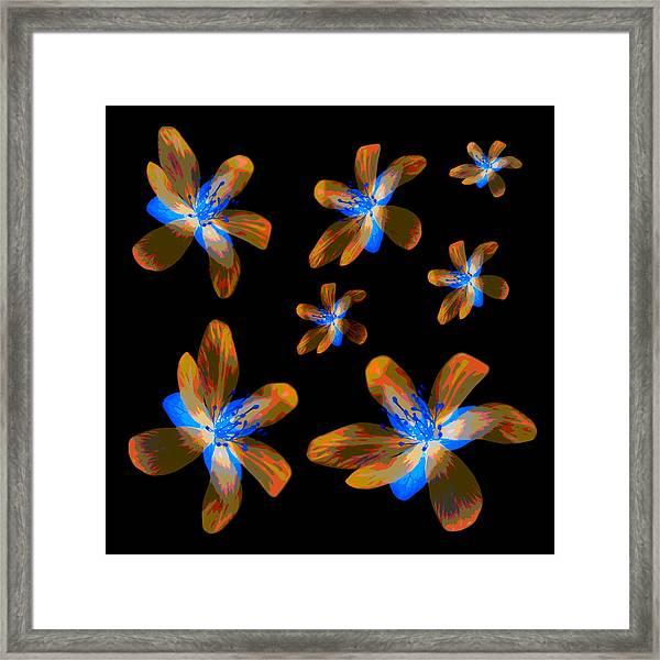 Study Of Seven Flowers #5 Framed Print