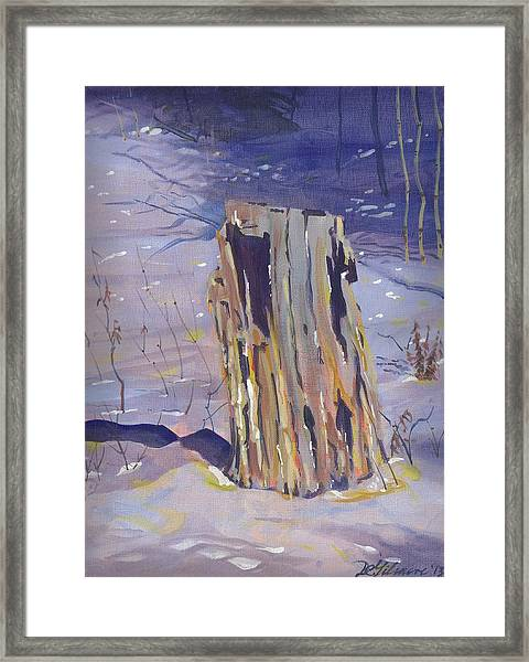 Stump In Winter Framed Print