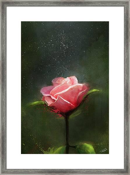 Subtle Beauty Framed Print