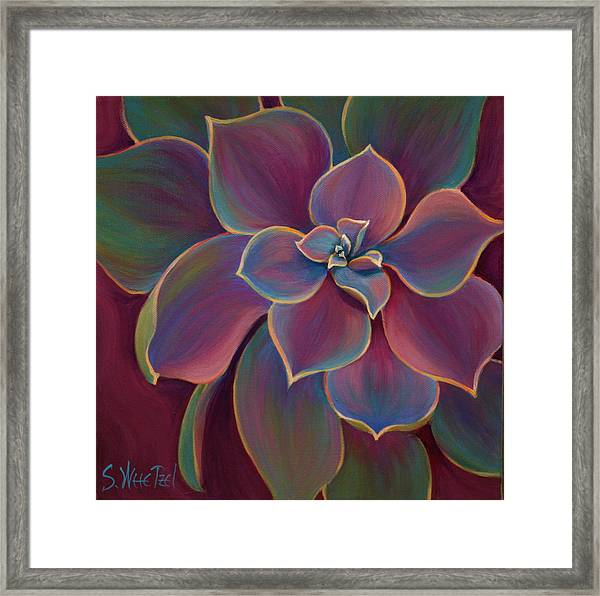 Framed Print featuring the painting Succulent Delicacy by Sandi Whetzel