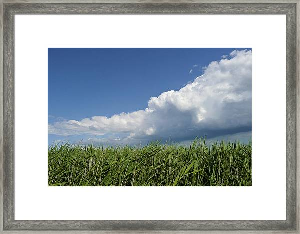 Suffolk Skies Framed Print