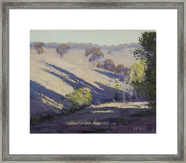Summer Afternoon Shadows Framed Print