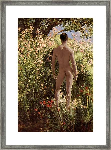 Summer Day In The Garden   Framed Print