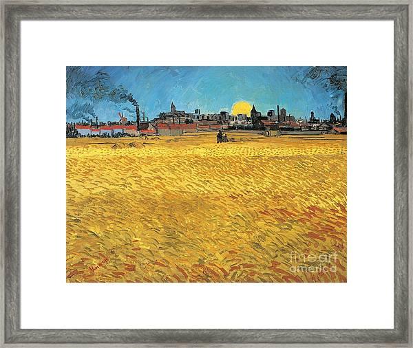 Summer Evening Wheat Field At Sunset Framed Print
