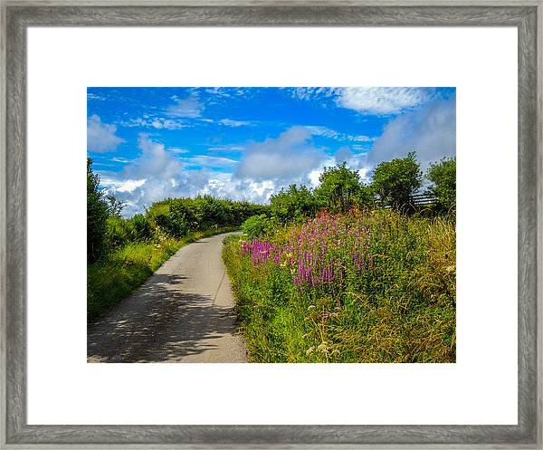 Summer Flowers On Irish Country Road Framed Print