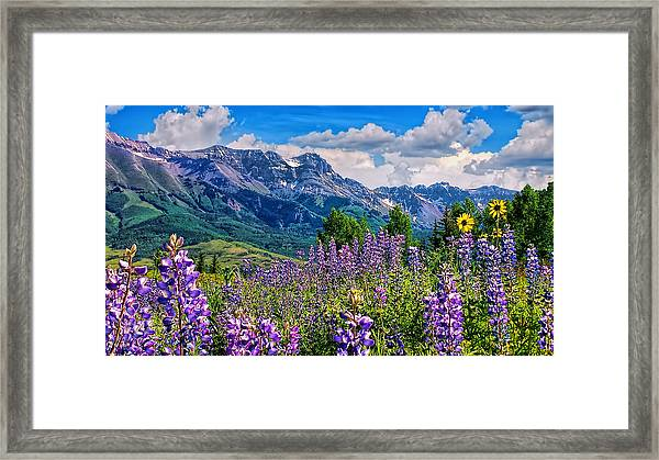 Summer In Telluride Framed Print