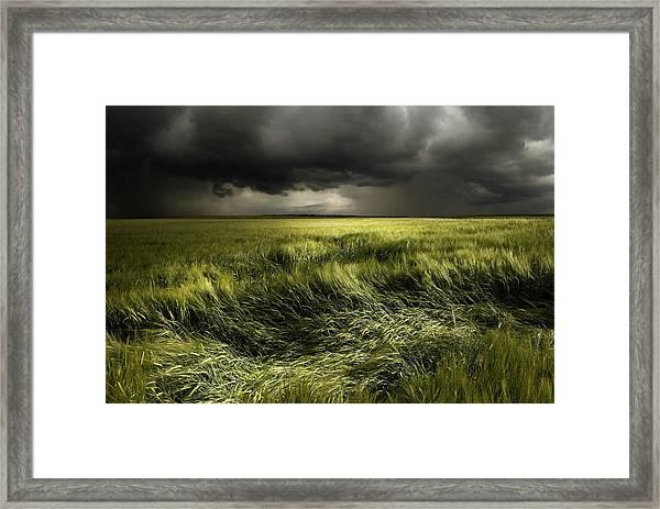 Summer Weather Framed Print