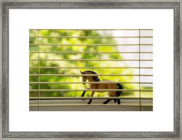 Summer Window Framed Print