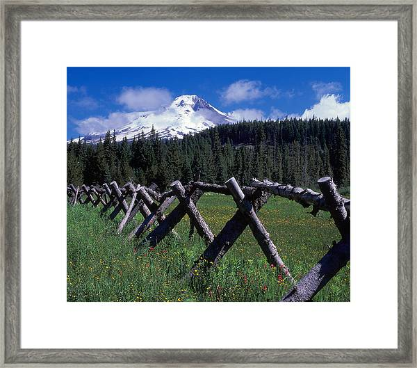 Summit Meadow Framed Print