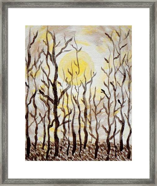 Sun And Trees Framed Print by Valerie Howell
