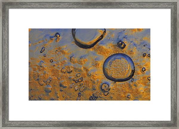 Sun Catcher Framed Print