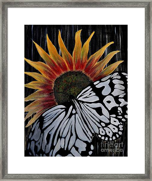 Sun-fly Framed Print