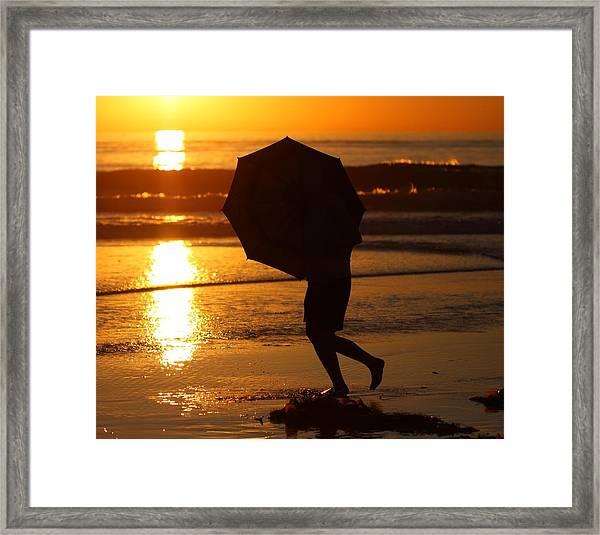Sun Shield Framed Print