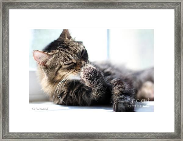 Sunbathing Framed Print