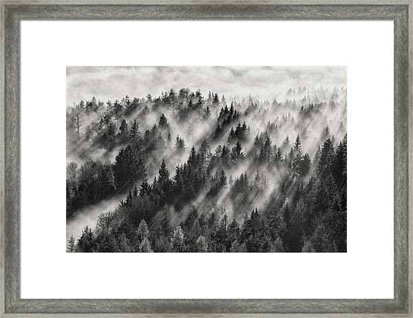 Sundance No.1 Framed Print