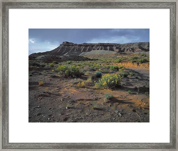 Sundowner Plateau Framed Print