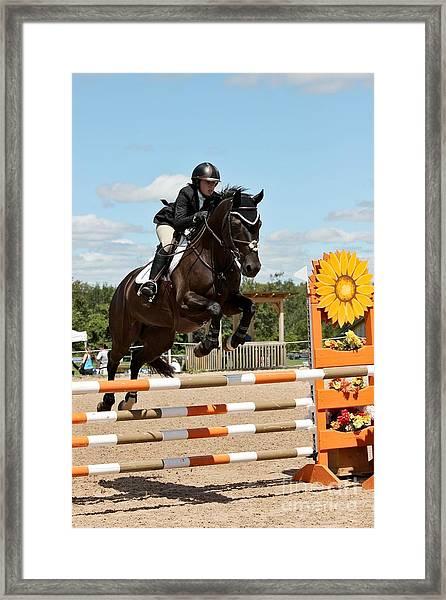 Sunflower Jumper Framed Print