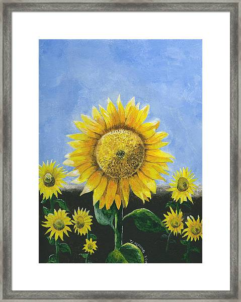 Sunflower Series One Framed Print