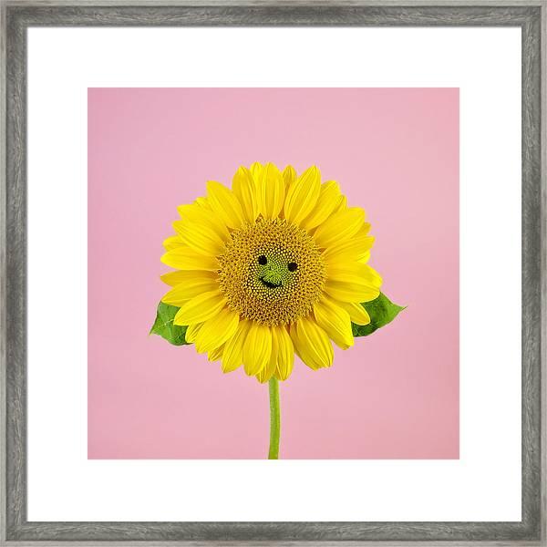 Sunflower Smiley Face Framed Print