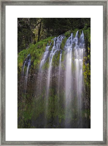 Sunlight On Mossbrae Framed Print