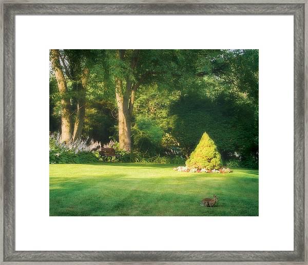 Sunlit Greens Framed Print