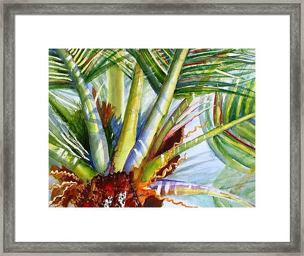 Sunlit Palm Fronds Framed Print