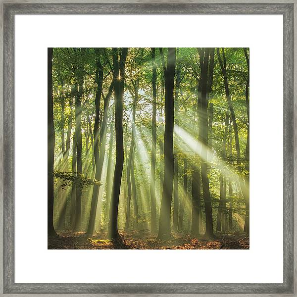 Sunny Start To The Day ........ Framed Print