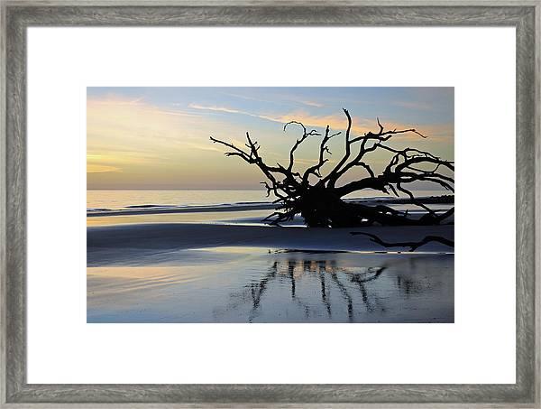 Sunrise At Driftwood Beach 6.6 Framed Print