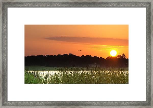 Sunrise At Lakewood Ranch Florida Framed Print