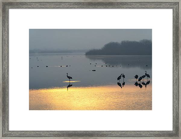 Sunrise Over The Hula Valley Israel 1 Framed Print