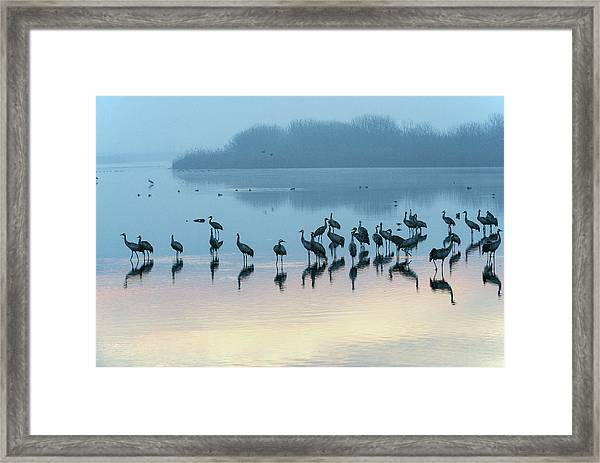 Sunrise Over The Hula Valley Israel 5 Framed Print