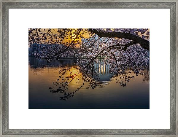 Framed Print featuring the photograph Sunrise At The Thomas Jefferson Memorial by Susan Candelario